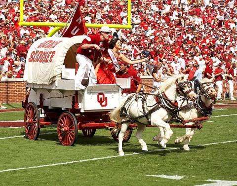 Oklahoma Sooners Mascot