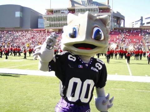 TCU Football Mascot