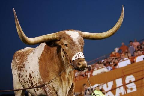 Texas Football Mascot